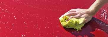 FREE Car Detail Image
